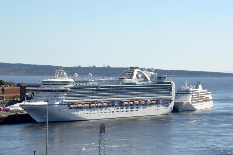 contrast cruiseships
